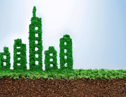 Optiven Homes Embraces Greening As World Celebrates Green Building Week